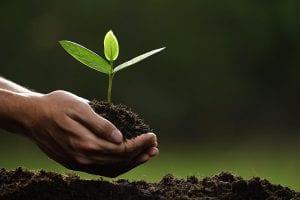O que é licenciamento ambiental e como ele afeta seu imóvel