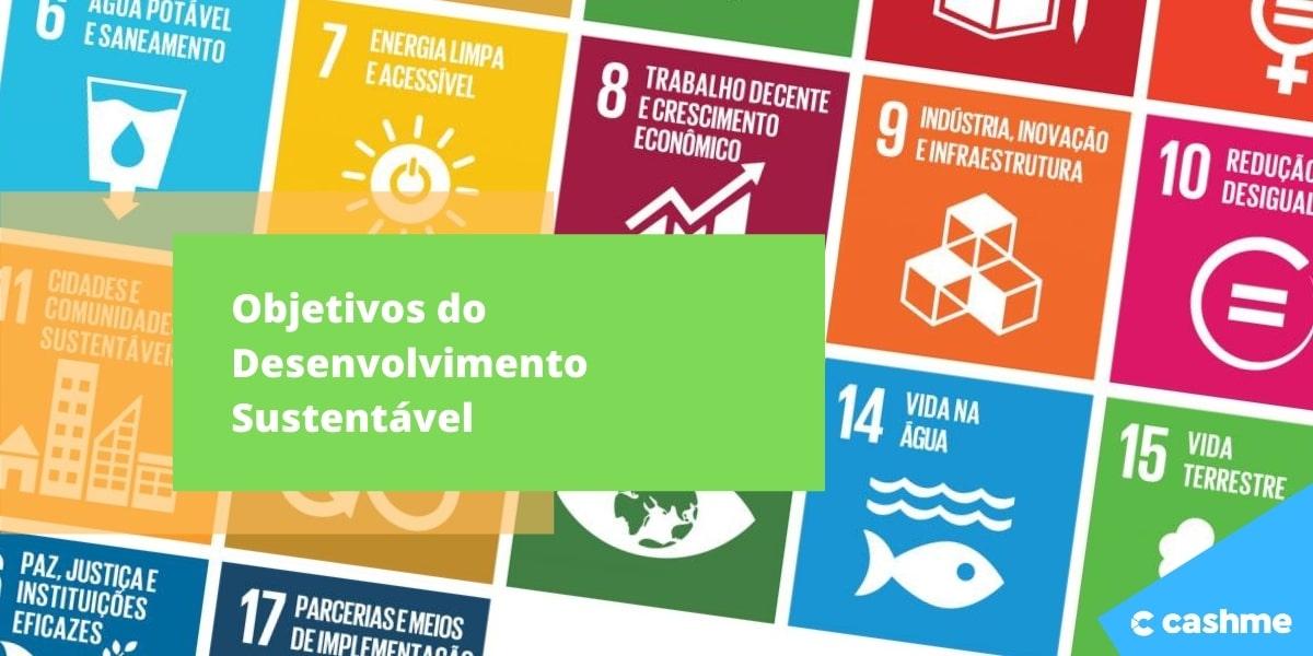 Objetivos do Desenvolvimento Sustentável: saiba como funcionam
