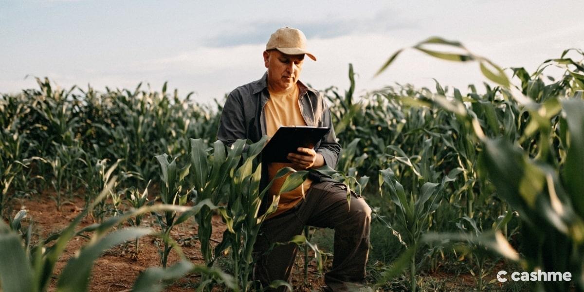 Dia do Agrônomo: veja curiosidades sobre a profissão